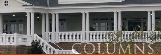 Columns made of Vinyl or Fypon are a great structural choice for your porch.